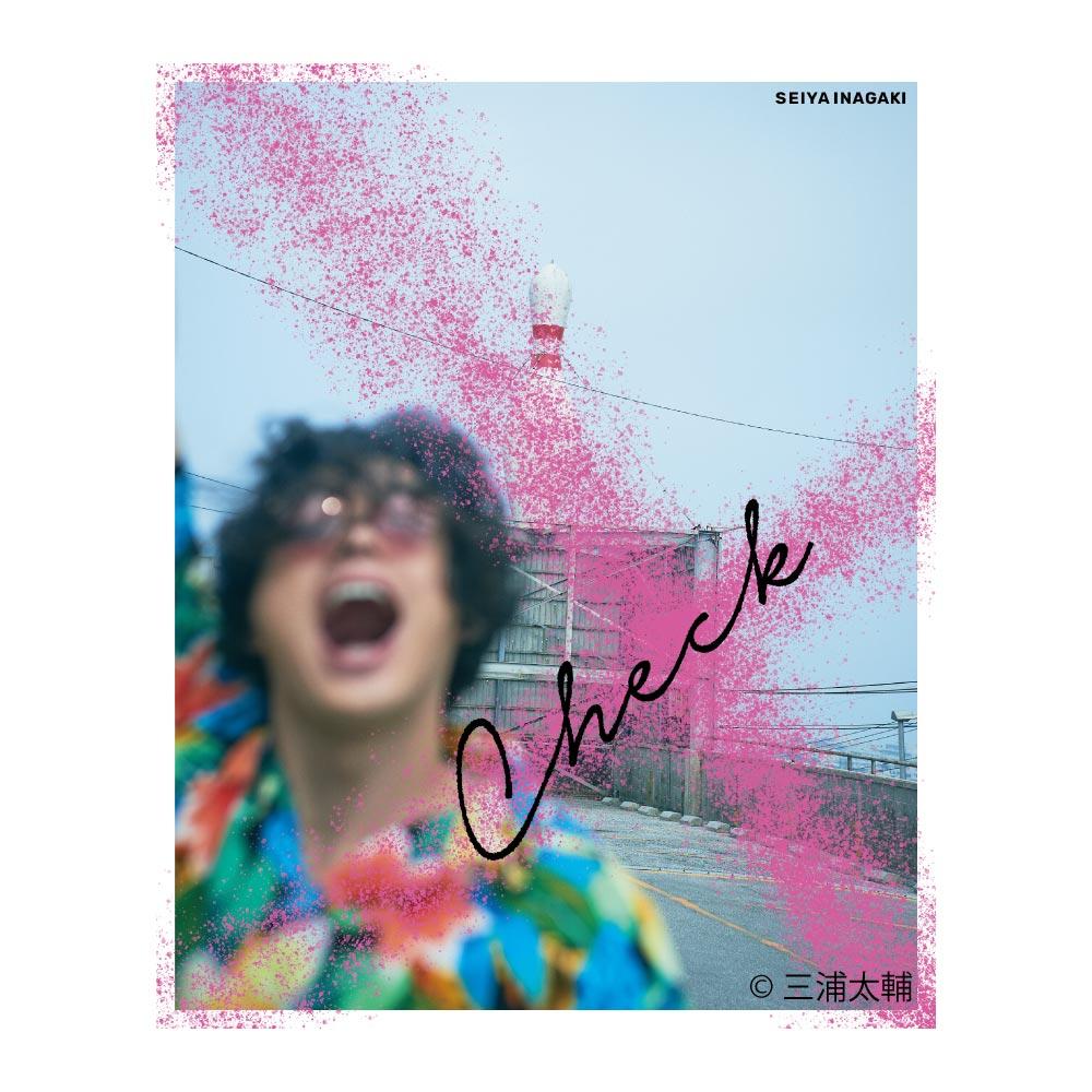 画像1: 稲垣成弥  1st写真集「Check」 (1)